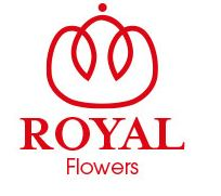 Плантация ROYALFLOWERS, Эквадор