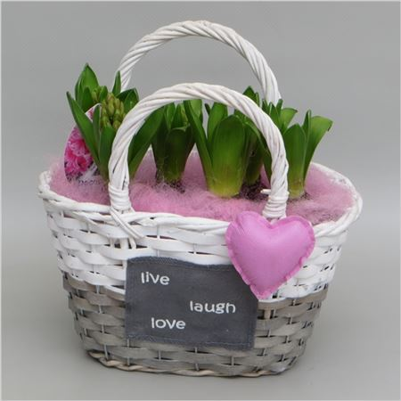 Гиацинт In Valentine Basket
