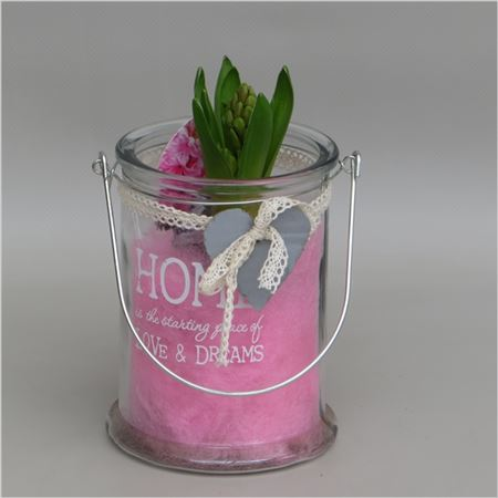 Гиацинт In Mini Home Love & Dreams Glass