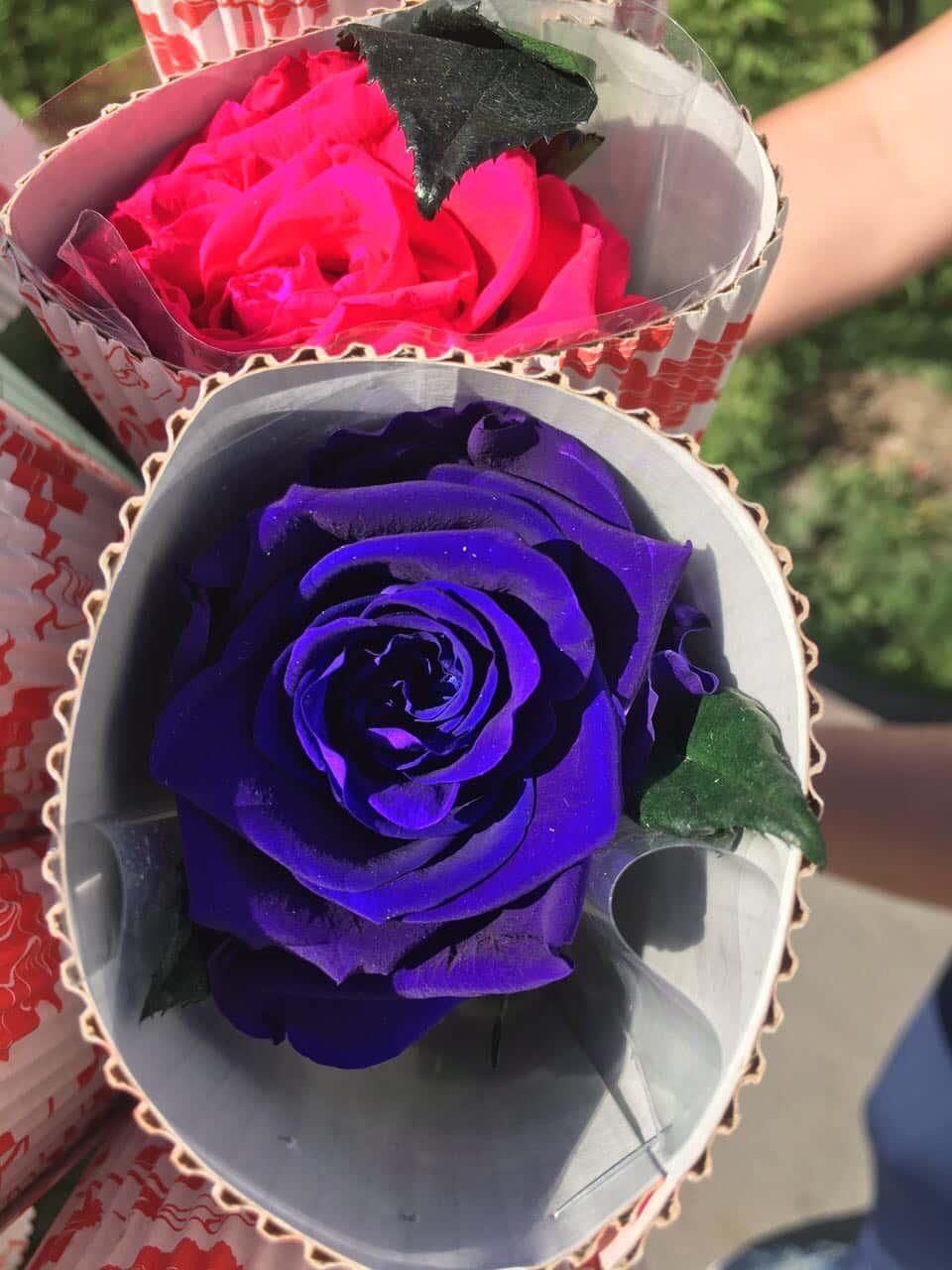 Искусственные цветы как живые даже на ощупь купить